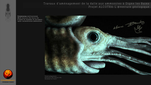 Ammonite_Planche-02h-(c)-MarcBoulay
