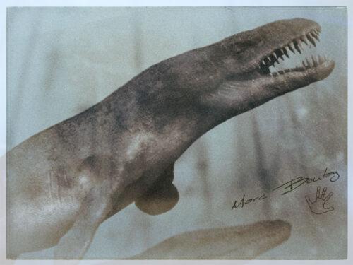 Dakosaurus(c)MarcBoulay