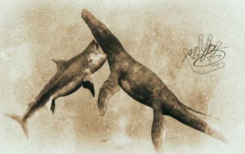 Lioplerodon-Vs-Shark (c) MarcBoulay