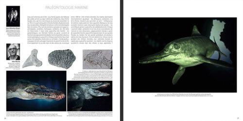 PaleontologieMarine