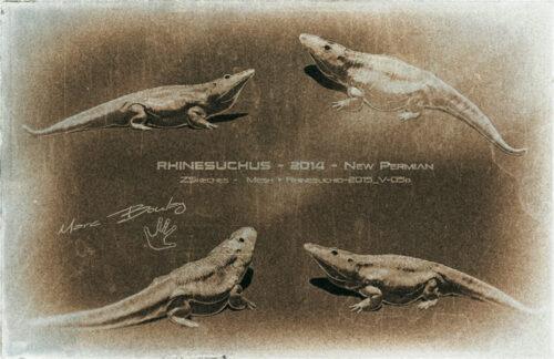 Rhinesuchid (c) MarcBoulay