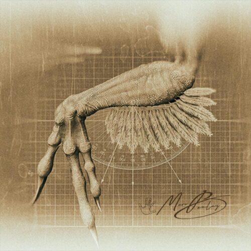 Utahraptor-Planche-03a-(c)-MarcBoulay